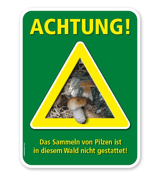 Forstschild Achtung, das Sammeln von Pilzen ist in diesem Wald nicht gestattet – G/GW