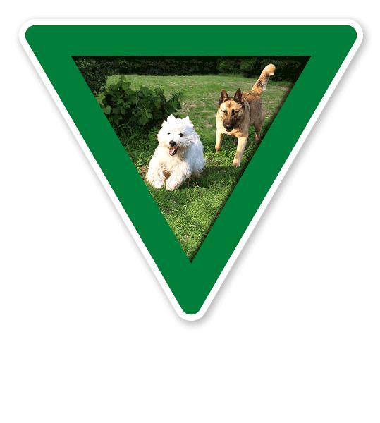 Verkehrsschild Vorsicht, Hundeauslauf - Hundeplatz (grün)