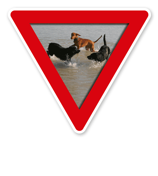 Verkehrsschild Vorsicht, Hundebadestelle - Hundeplatz (rot)