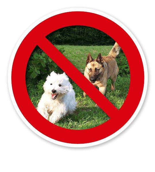 Verkehrsschild Hunde verboten