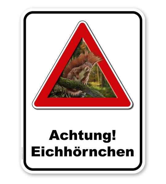 Kombischild Achtung Eichhörnchen - 2