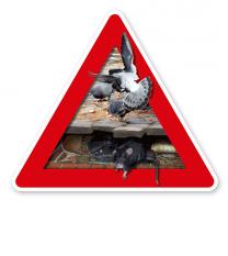 Verkehrsschild Achtung, wer Tauben füttert, füttert auch Ratten