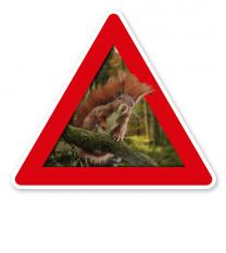 Verkehrsschild Achtung, Eichhörnchen – Tierschutz