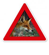Verkehrsschild Achtung, Fuchs - Fuchsbandwurm, Wildtollwut 2