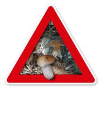 Verkehrsschild Achtung, Pilze (sammeln verboten) – Naturschutz