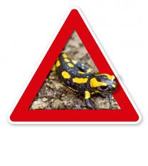 Verkehrsschild Achtung, Salamander (Amphibien) – Tierschutz