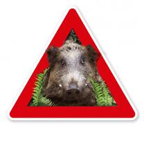 Verkehrsschild Achtung, Wildschweine - Schweinepest - Tierschutz