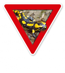 Verkehrsschild Vorsicht, Amphibienwanderung, Salamander – Tierschutz (rot)