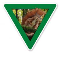 Verkehrsschild Vorsicht, Eichhörnchen – Tierschutz (grün)