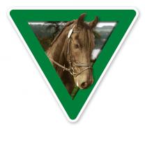 Verkehrsschild Vorsicht, Pferde (grün)