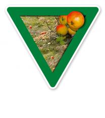 Verkehrsschild Vorsicht, Streuobstwiese - Naturschutz
