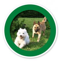 Verkehrsschild Hunde erlaubt – Hundeplatz