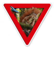 Verkehrsschild Vorsicht, Waldnaturschutzgebiet (rot)