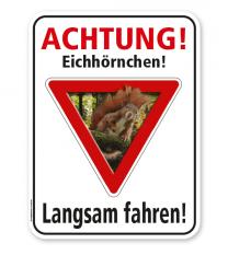 Tierschutzschild Achtung, Eichhörnchen. Langsam fahren - Salamander – G/GW