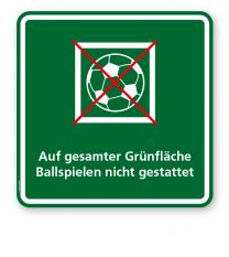 Schild Auf gesamter Grünfläche Ballspielen nicht gestattet 1P - KSP-3