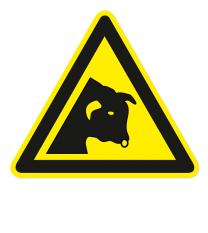 Warnzeichen Warnung vor dem Stier nach DIN EN ISO 7010 - W 034