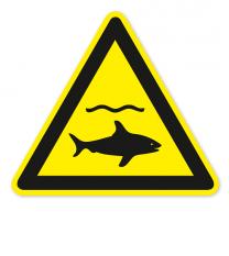 Warnzeichen Warnung vor Haien nach DIN ISO 20712-1 - WSW 012