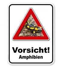 Kombischild Vorsicht Amphibien Salamander