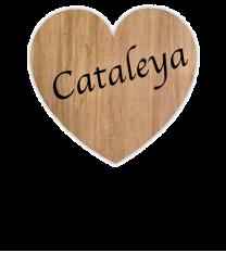 Maibaumschild Herz aus Holz - WH